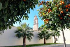 campana-convento-santaclara