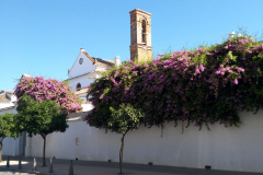 monasterio-sanfrancisco