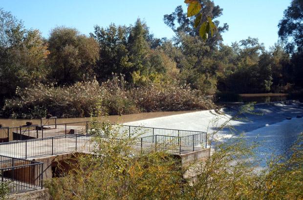 Mirador río Genil - Turismo Palma del Río - Córdoba