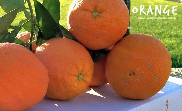 Orange3 - Turismo Palma del Río (Córdoba)