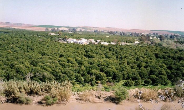 Ruta de Senderismo - Turismo Palma del Río - Córdoba