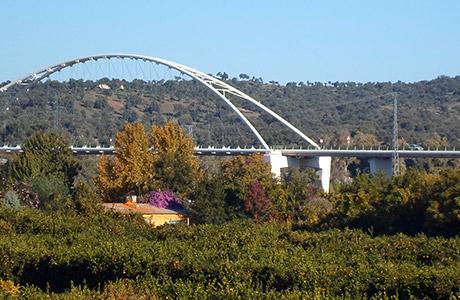 Puente Nuevo - Turismo Palma del Río - Córdoba