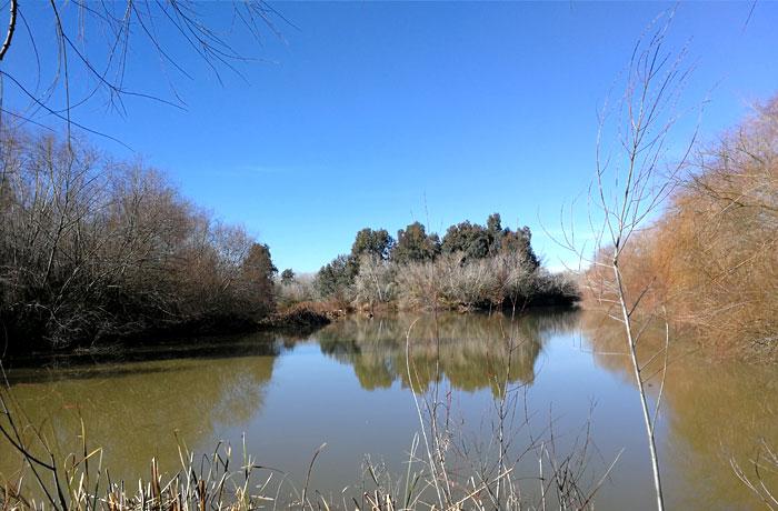Unión ríos Guadalquivir y Genil - Turismo Palma del Río - Córdoba