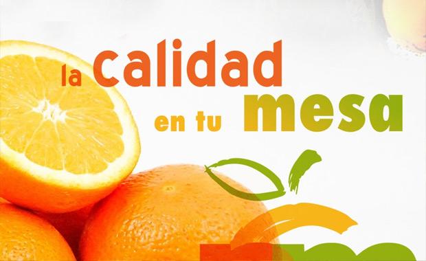 Naranja - Turismo Palma del Río (Córdoba)